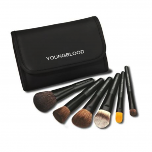 Professional Mini 6 Piece Brush Set